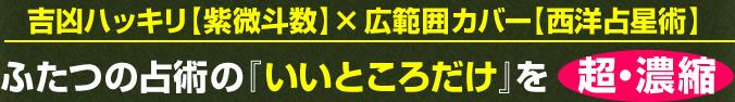 吉凶ハッキリ【紫微斗数】×広範囲カバー【西洋占星術】ふたつの占術の『いいところだけ』を超・濃縮